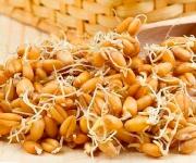 Что такое «живые витамины»?_2